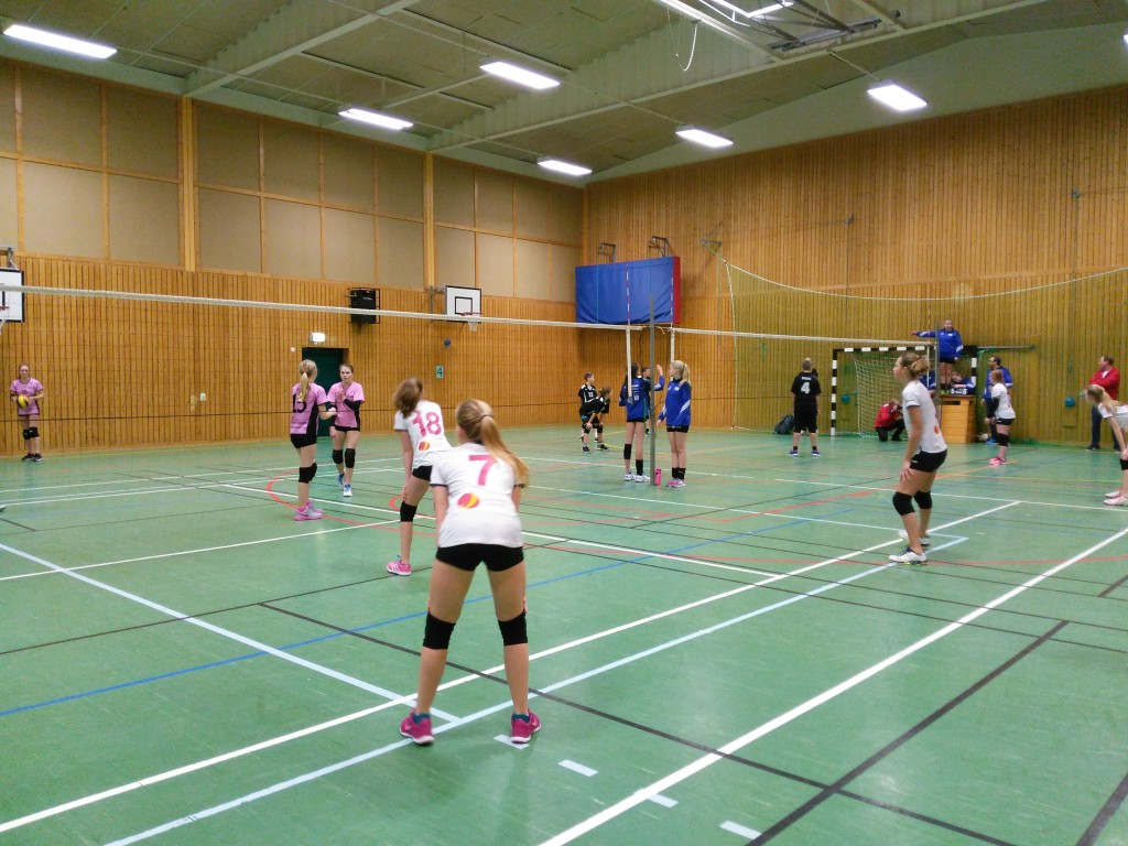 Swedish youth volleyball in action