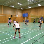 Youth volleyball, Swedish style